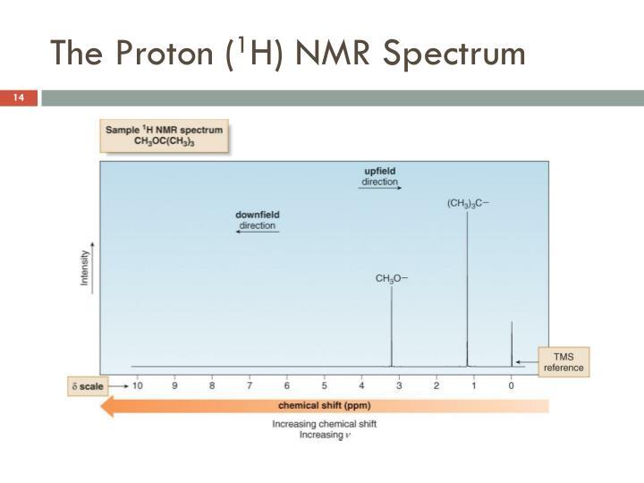 The Proton (