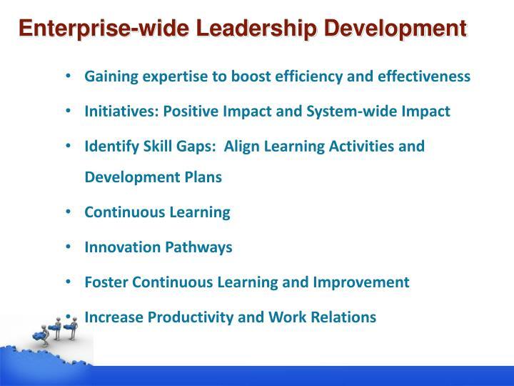 Enterprise-wide Leadership Development