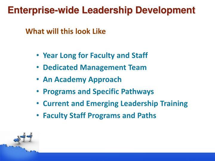 Enterprise-wide Leadership