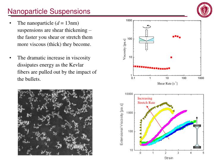 Nanoparticle Suspensions