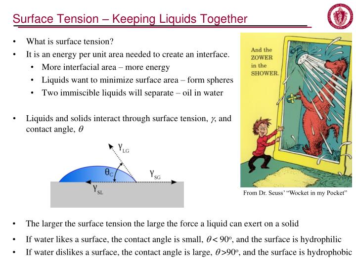Surface Tension – Keeping Liquids Together