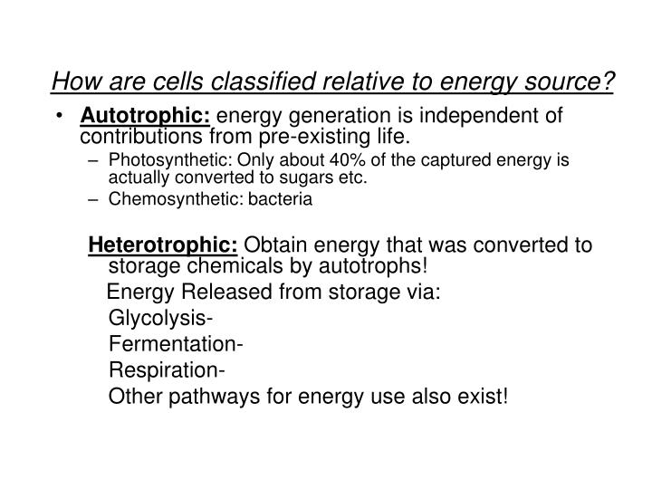 How are cells classified relative to energy source?