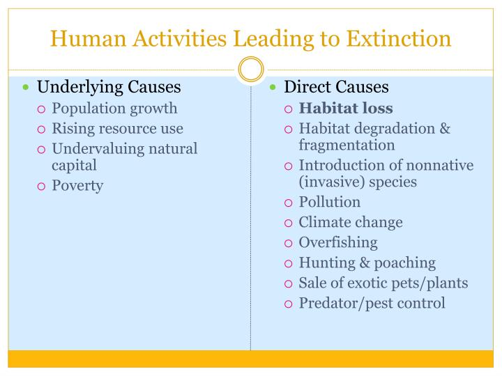 Human Activities Leading to Extinction