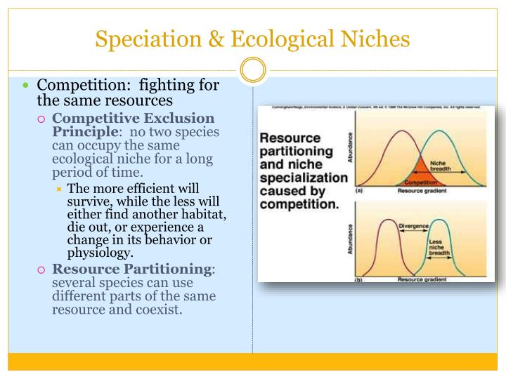 Speciation & Ecological Niches