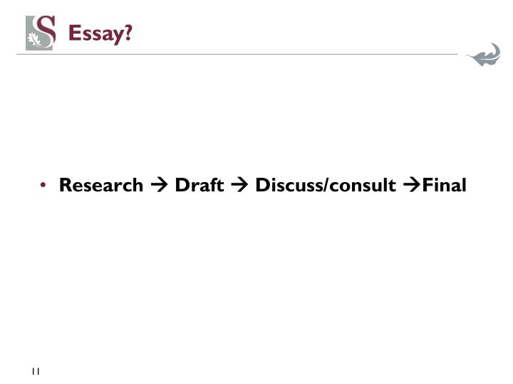 Essay?