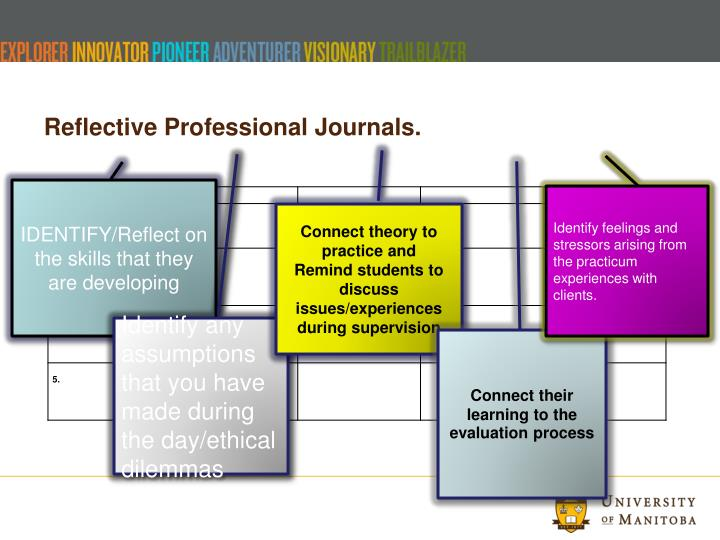 Reflective Professional Journals.