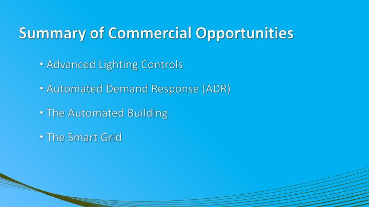 Summary of Commercial Opportunities