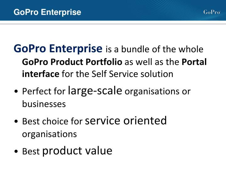 GoPro Enterprise