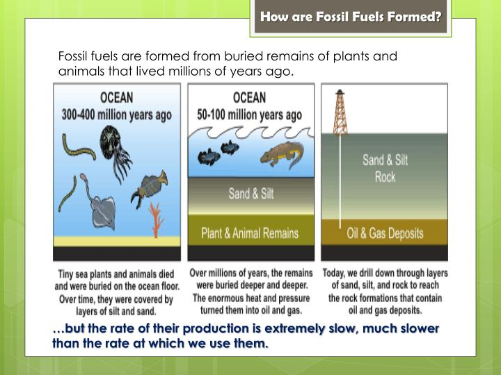 How are Fossil Fuels Formed?