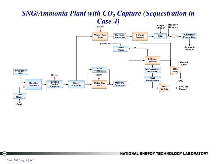SNG/Ammonia