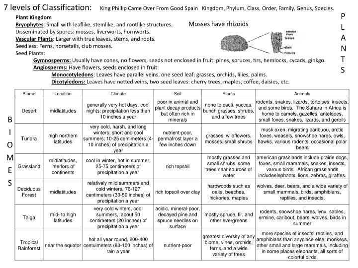 7 levels of Classification: