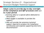 strategic decision 1 organizational structure budget technical support