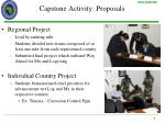 capstone activity proposals