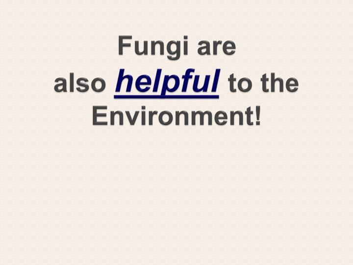Fungi are