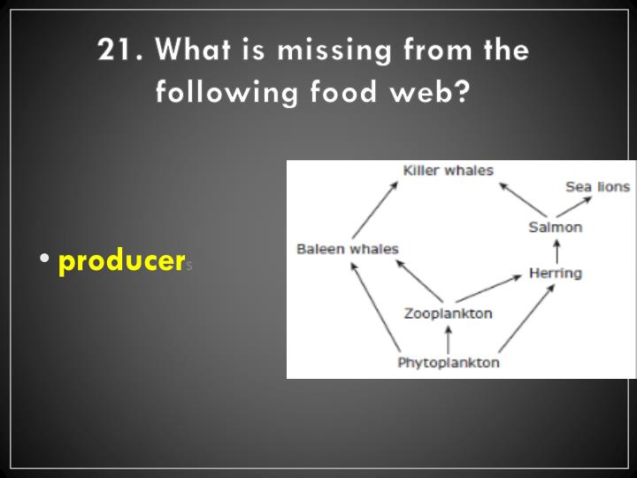 21. What is missing from the following food web?