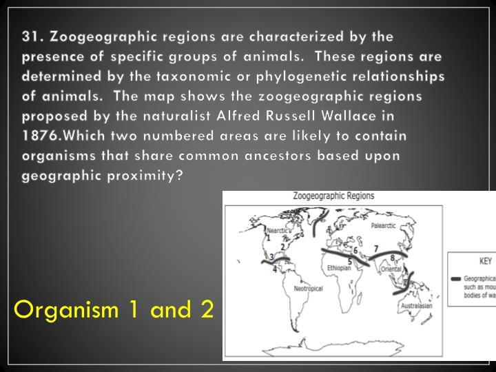 31. Zoogeographic