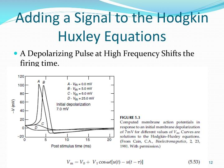 Adding a Signal to the Hodgkin Huxley Equations