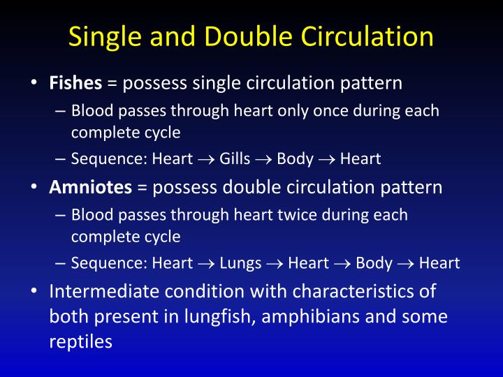 Single and Double Circulation