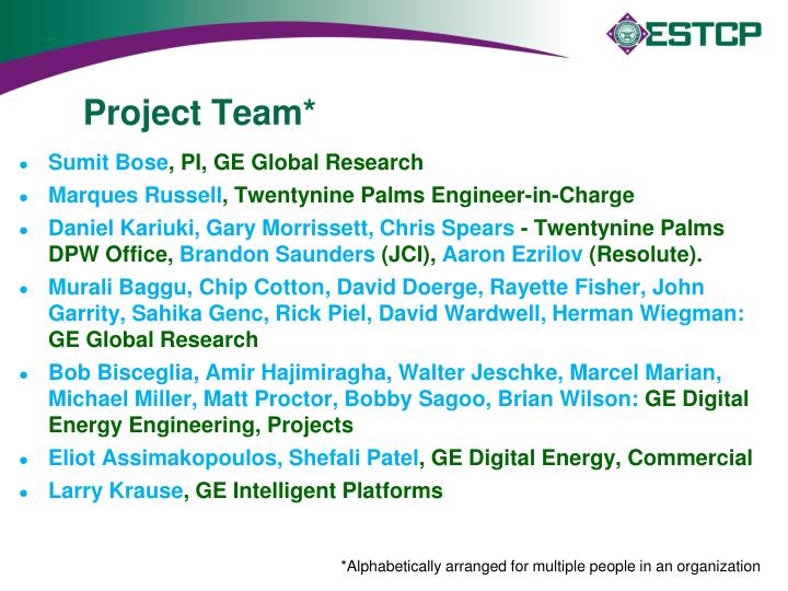 Project Team*