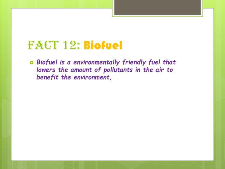 Fact 12: