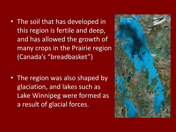 "The soil that has developed in this region is fertile and deep, and has allowed the growth of many crops in the Prairie region (Canada's ""breadbasket"")"