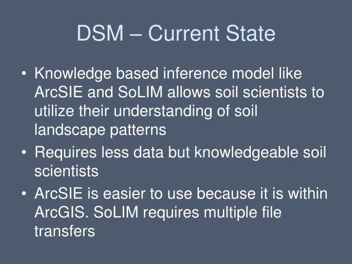 DSM – Current State