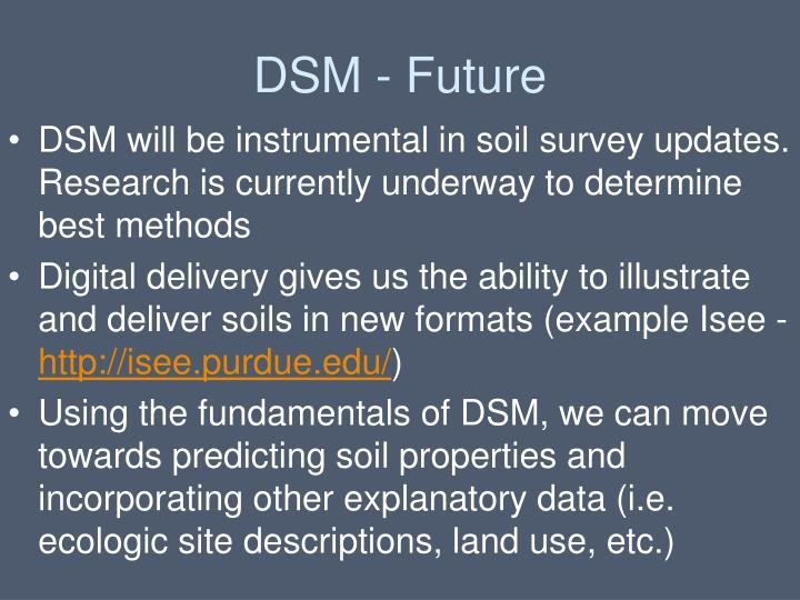 DSM - Future