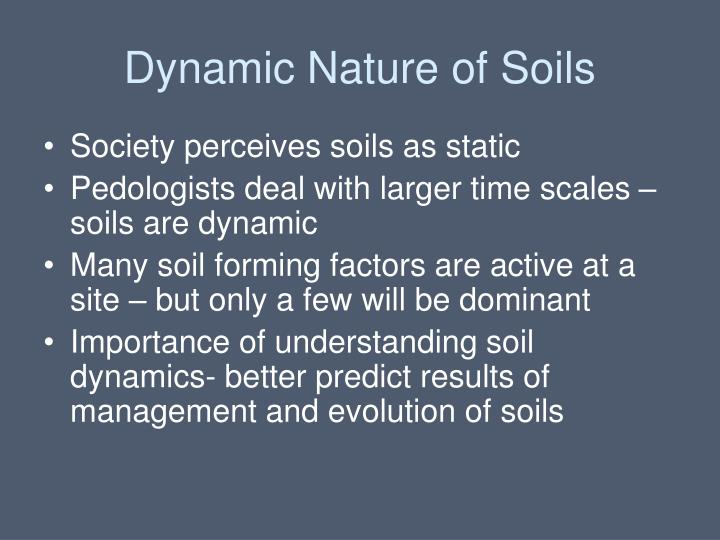 Dynamic Nature of Soils