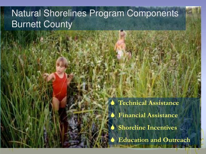 Natural Shorelines Program Components