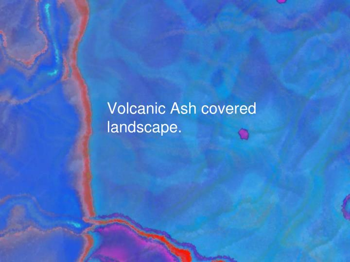 Volcanic ash covered landscape