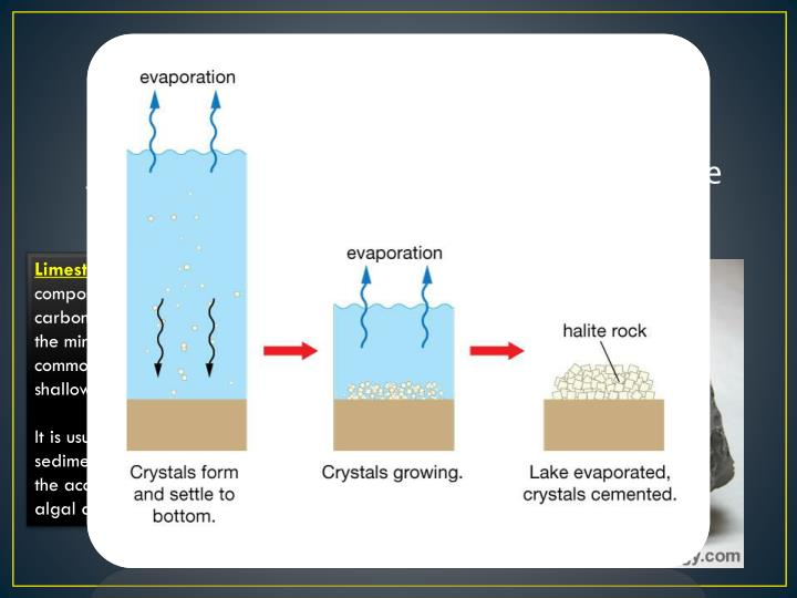 Sedimentary Rock – From Minerals Crystallisaing from Solution