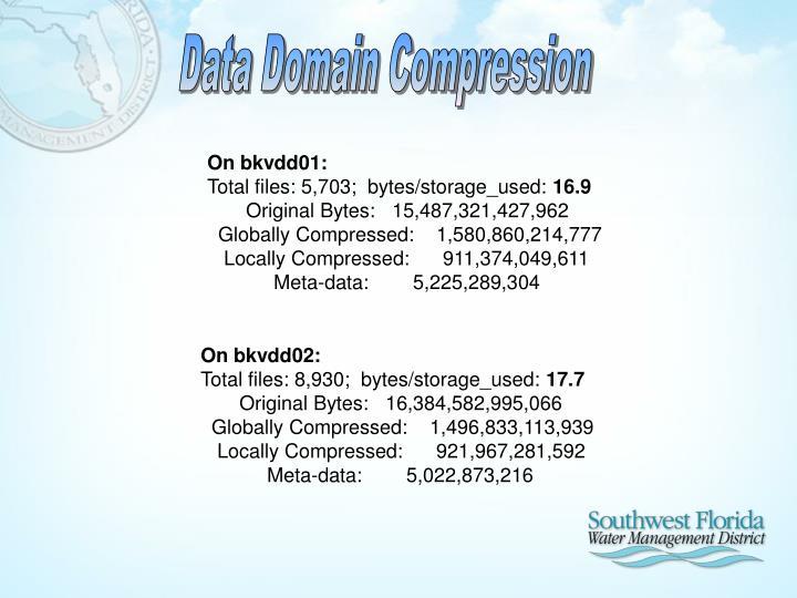 Data Domain Compression