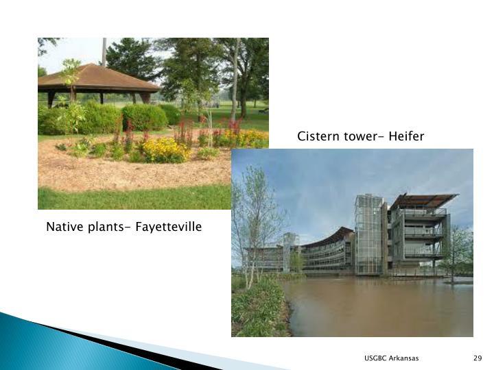 Cistern tower- Heifer