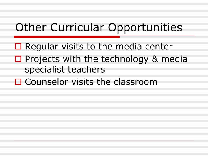 Other Curricular Opportunities