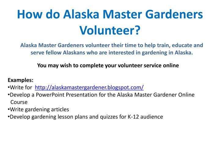 How do Alaska Master Gardeners Volunteer?