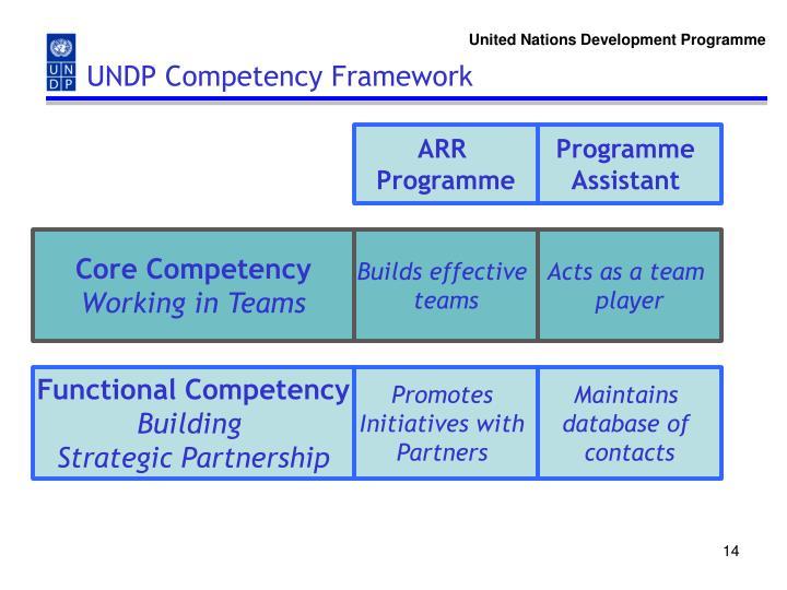 UNDP Competency Framework