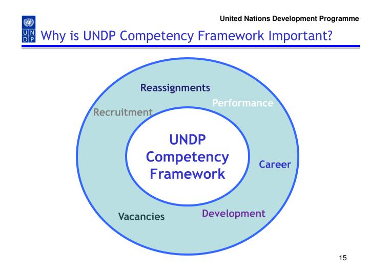 Why is UNDP Competency Framework Important?