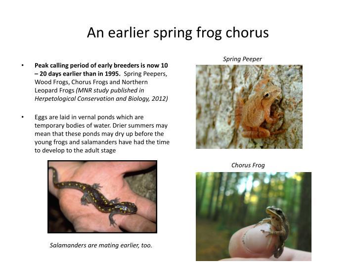 An earlier spring frog chorus