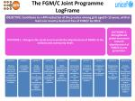 the fgm c joint programme logframe