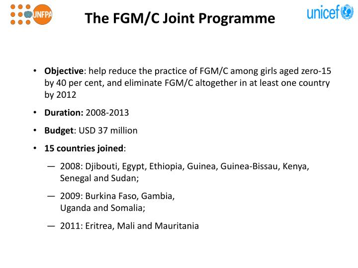 The fgm c joint programme