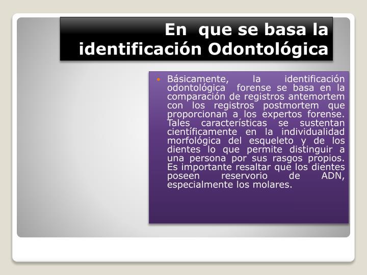 En  que se basa la identificación Odontológica