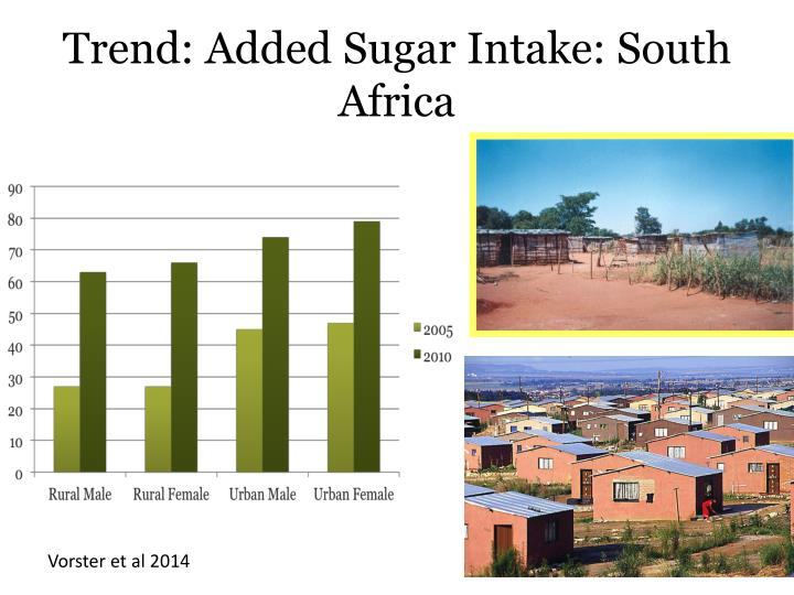 Trend: Added Sugar Intake: South Africa