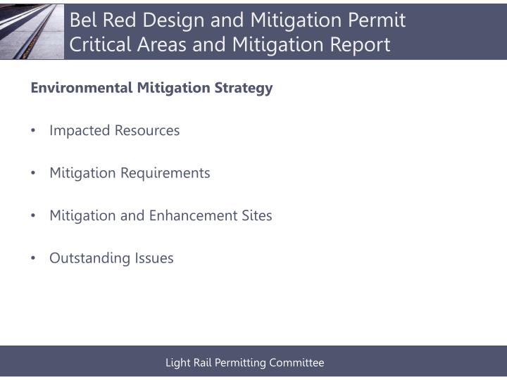 Bel Red Design and Mitigation Permit Critical Areas and Mitigation Report