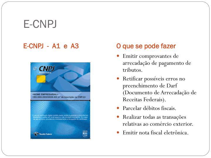 E-CNPJ