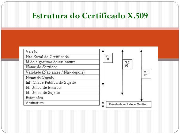 Estrutura do Certificado X.509
