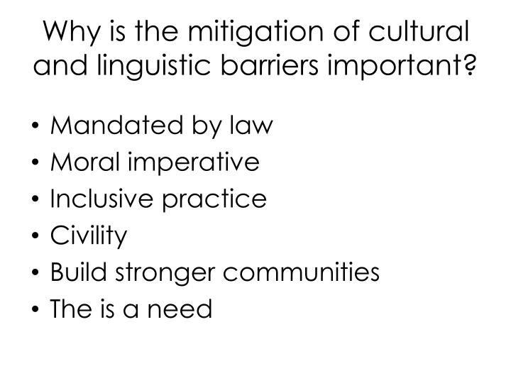 Why is the mitigation of cultural and linguistic barriers important?