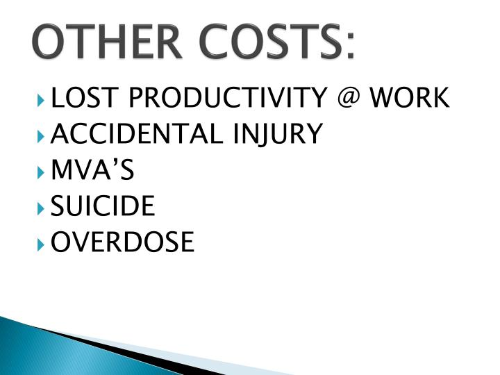 OTHER COSTS:
