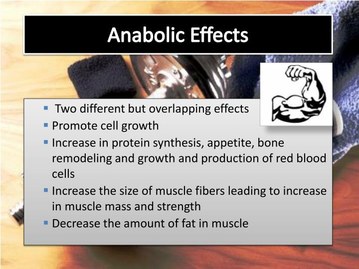 Anabolic Effects