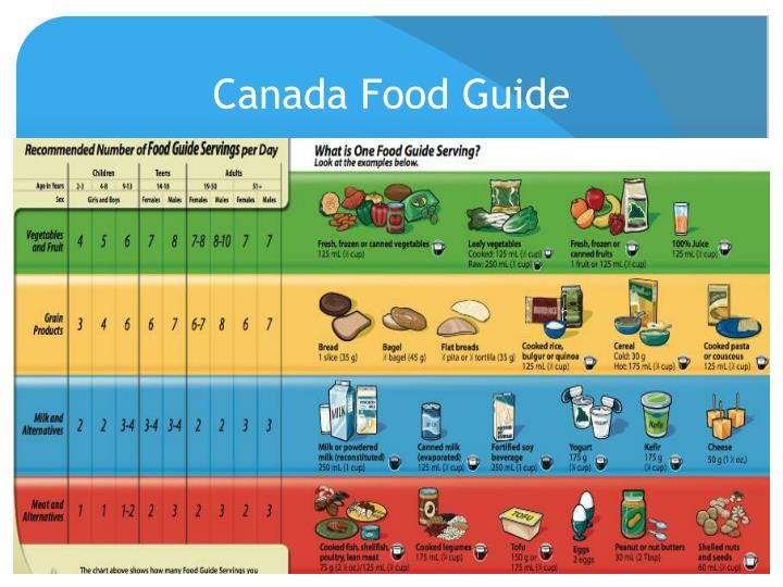 Canada Food Guide