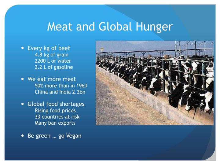 Meat and Global Hunger